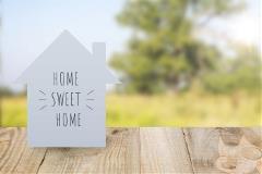 Home_Loans